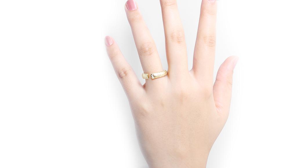 Hisho[飛翔] K18/K18WG Diamond Ring SHINKO STUDIO